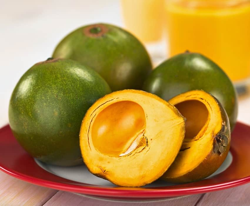 frutto di lucuma